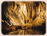 Mole Creek Caves